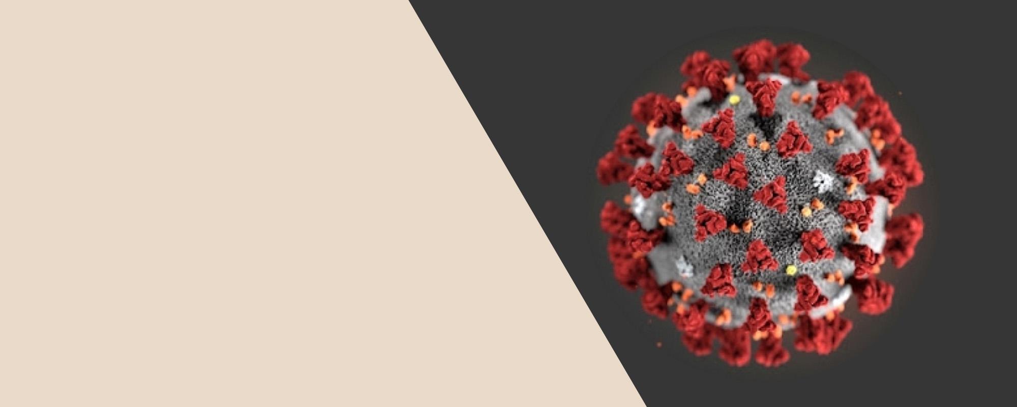 Informácia ohľadom pandémie koronavírusom